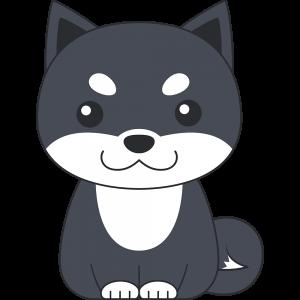 座る柴犬(黒-2)