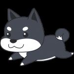 走る柴犬(黒)の無料イラスト