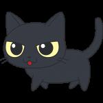 かわいい黒猫の無料イラスト