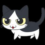 かわいい白黒猫の無料イラスト