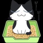猫砂でおしっこをする白黒猫の無料イラスト
