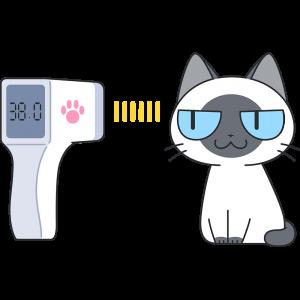 赤外線で体温を測る猫