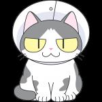 エリザベスカラーをする猫の無料イラスト