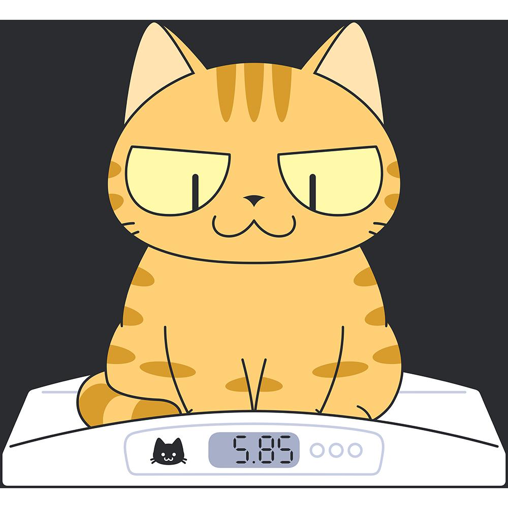 猫の体重測定の無料イラスト