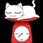 子猫の体重測定の無料イラスト