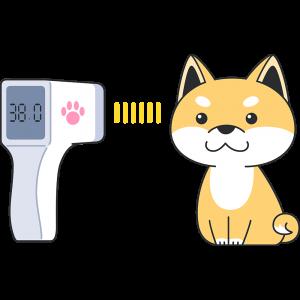赤外線で体温を測る犬