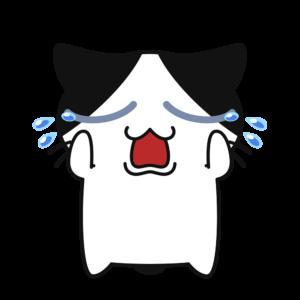 泣く猫コハクちゃん