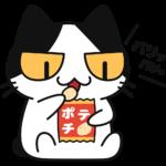 スナック菓子を食べる猫の無料イラスト