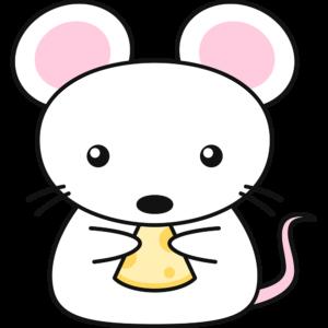 チーズを食べる白いネズミ