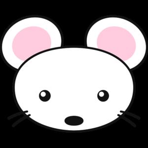 白いネズミの顔