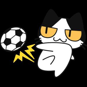 サッカー:シュートをする猫