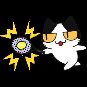 テニス:ボールを打つ猫