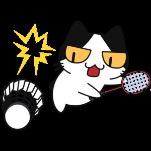 バドミントン:スマッシュを打つ猫