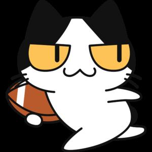 アメフトボールを持って走る猫