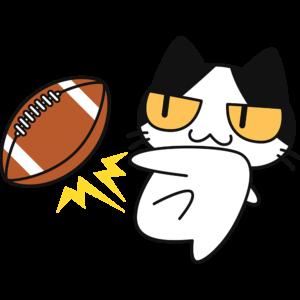 アメフトボールを蹴る猫