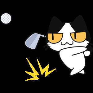 ゴルフ:アイアンでボールを打つ猫