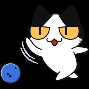 ボーリングをする猫