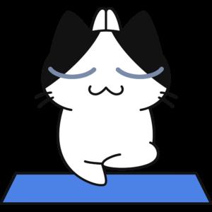 ヨガをする猫