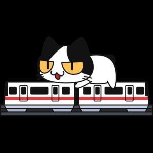 跨座式モノレールに乗る猫