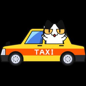 タクシーに乗る猫