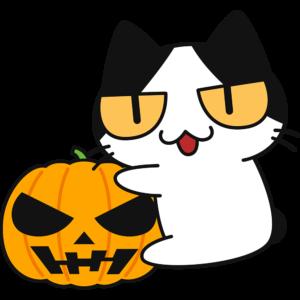 ハロウィンかぼちゃにしがみつく猫