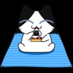 ビニールシートを敷いて弁当を食べる猫の無料イラスト