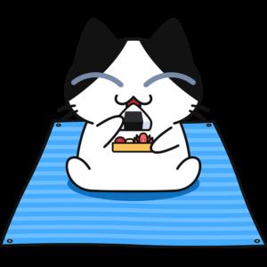 ビニールシートを敷いて弁当を食べる猫