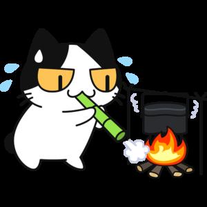 飯盒で米を炊く猫