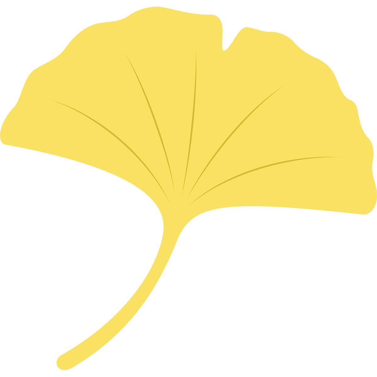黄色いイチョウの葉の無料イラスト