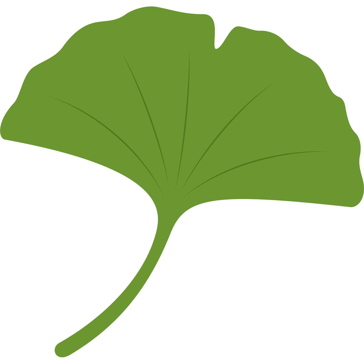 イチョウの葉の無料イラスト