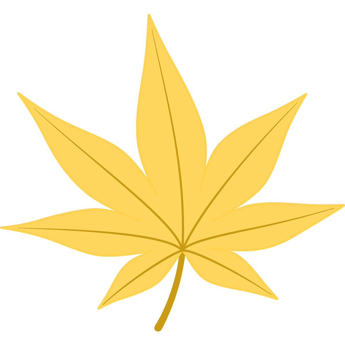 黄色いモミジの葉の無料イラスト