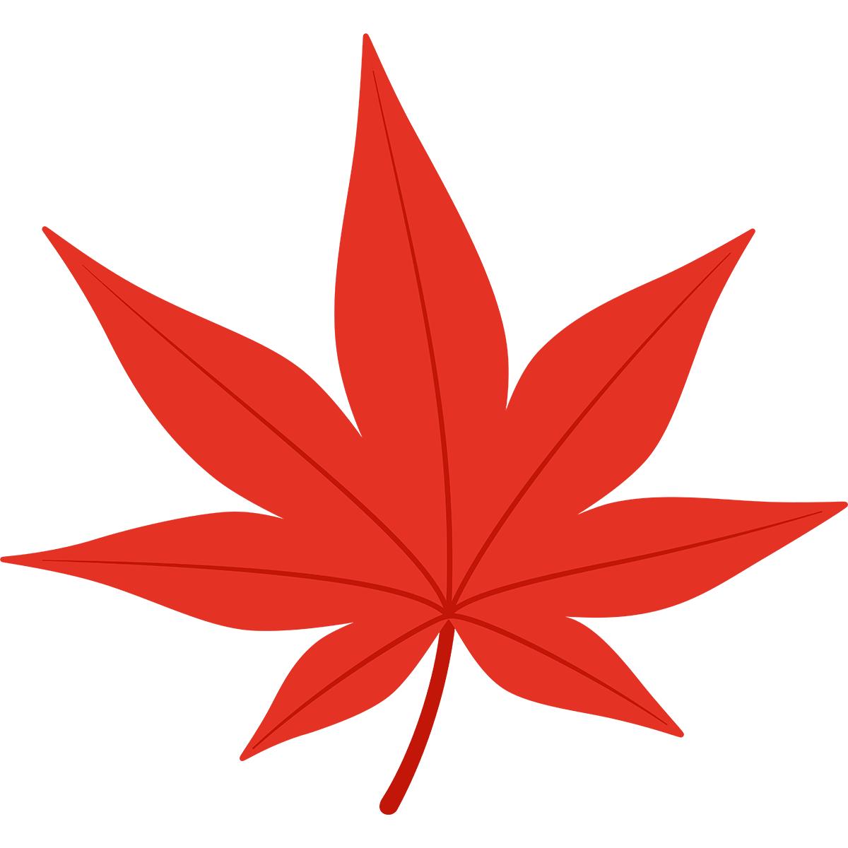 赤いモミジの葉の無料イラスト