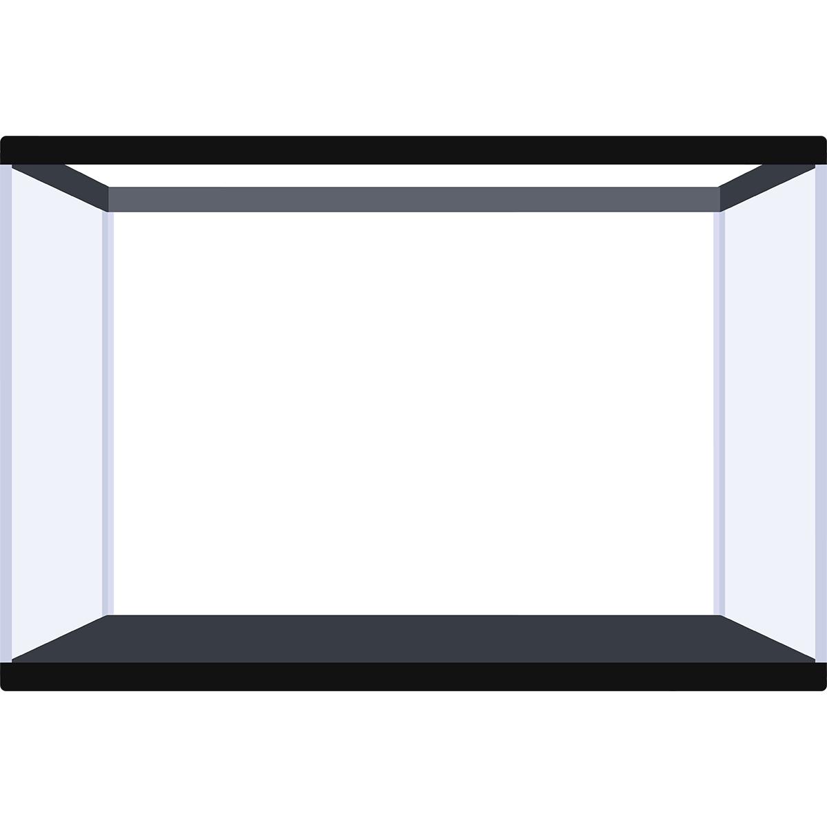 水槽の無料イラスト