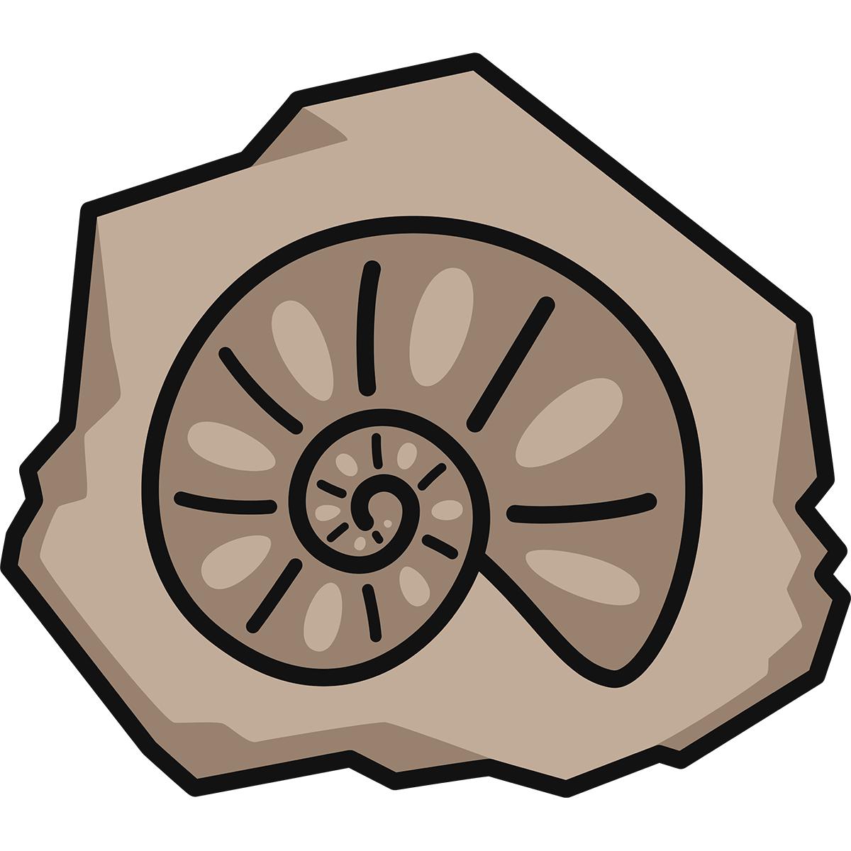 アンモナイトの化石の無料イラスト