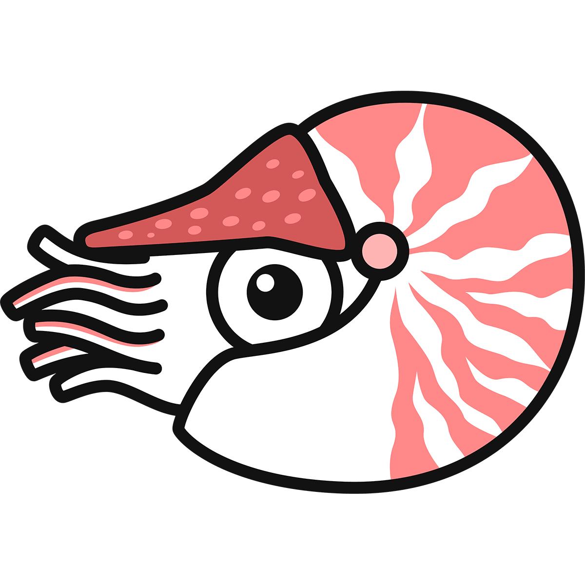 オウムガイの無料イラスト