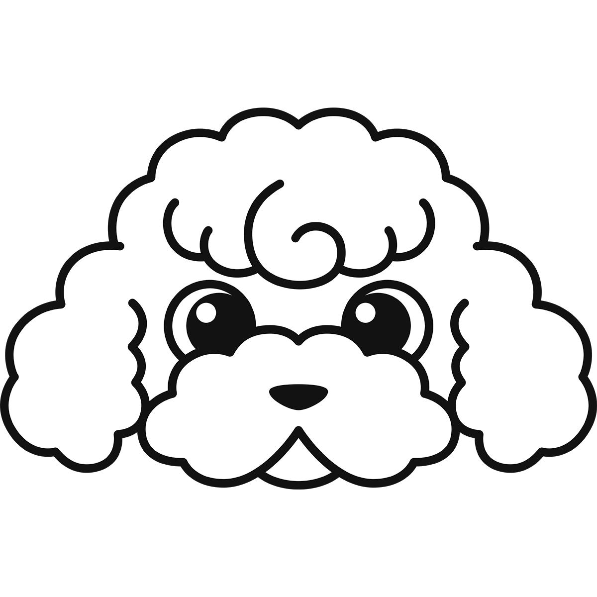 トイプードルの顔(白)の無料イラスト