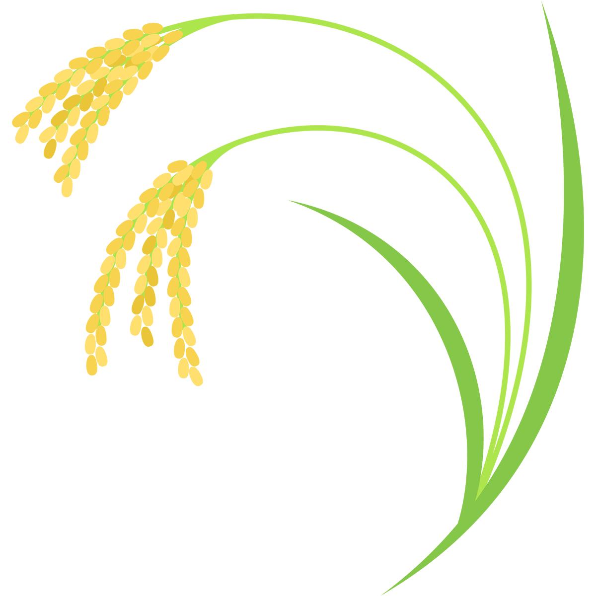 稲の無料イラスト