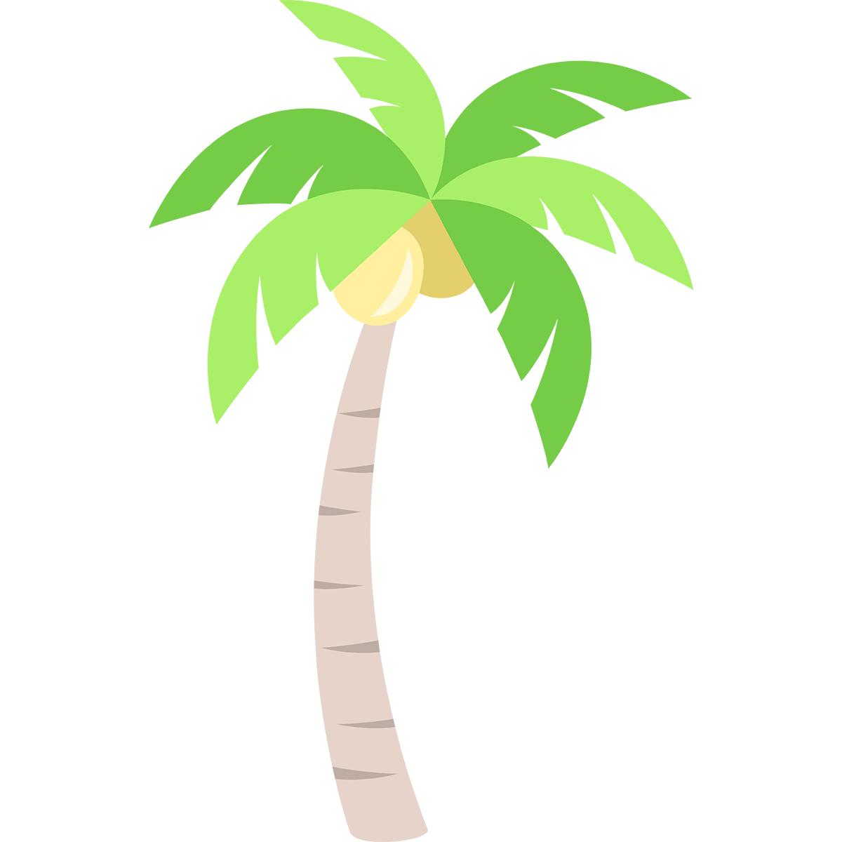 ヤシの木の無料イラスト
